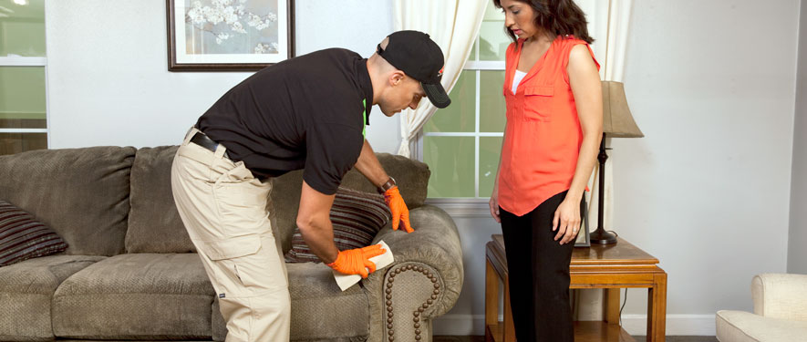 Maitland, FL carpet upholstery cleaning